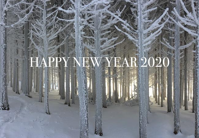winter-2019c-home